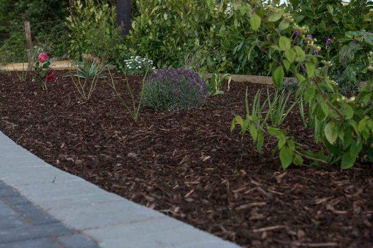 Maddie Dineen Garden Design 161936