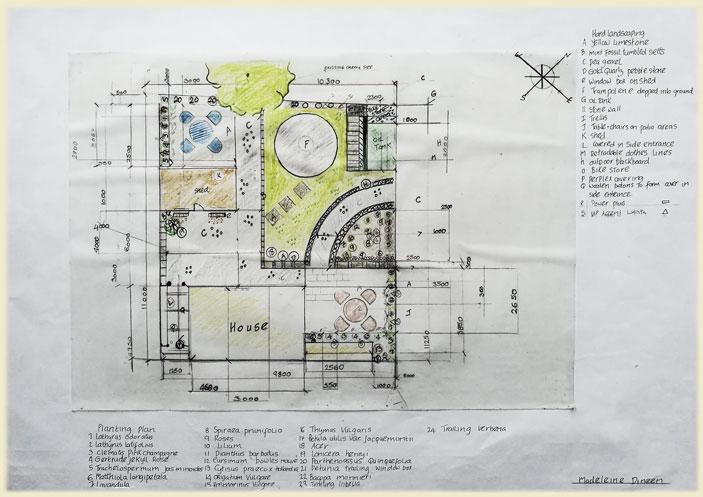 Maddie Dineen Garden Design Sketch